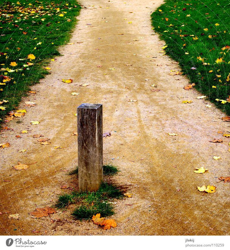 Abkürzung steinig Sand Gras grün Wiese Blatt Herbst Bürgersteig Poller Holz Fußgänger Holzmehl Jahreszeiten Gefäße Durchgang Grasnarbe Naturwuchs Erosion treten
