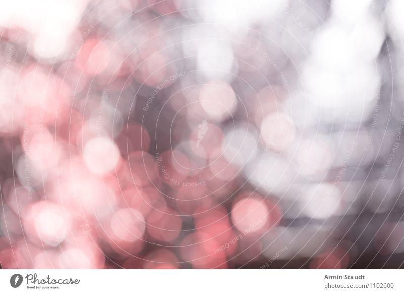 Boookeh! rot Beleuchtung Stil Hintergrundbild Stimmung hell glänzend Design träumen elegant ästhetisch Idee weich Punkt chaotisch