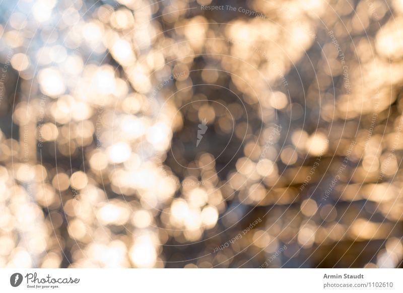 Bokeeeh! elegant Stil Design Nachtleben Ornament glänzend hell weich gelb Stimmung Euphorie ästhetisch chaotisch Idee Inspiration komplex träumen