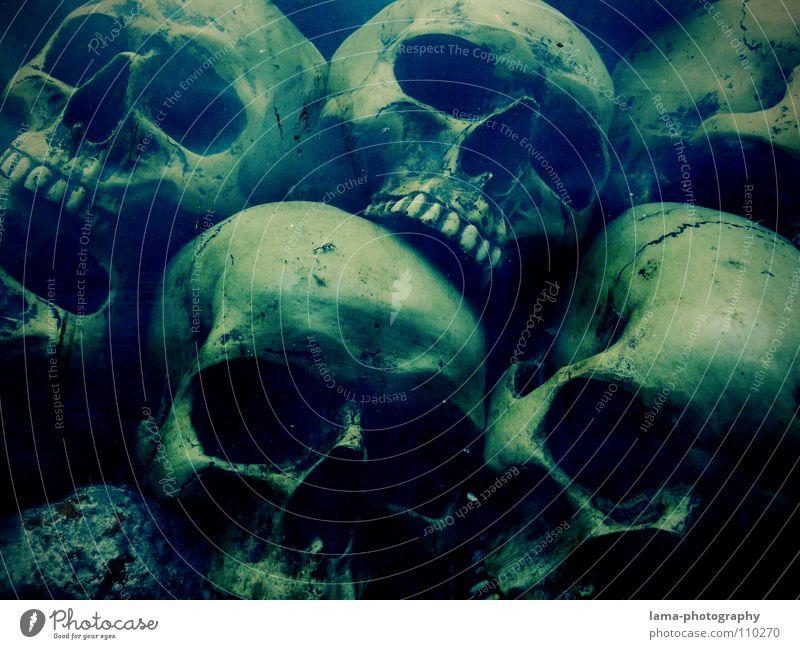 Totenköpfe (in der Tiefe II) totenkopf Skelett Gehirn u. Nerven fatal vergiftet ertrinken Meer Meeresboden Algen gruselig Horrorfilm Angst Alptraum Grab