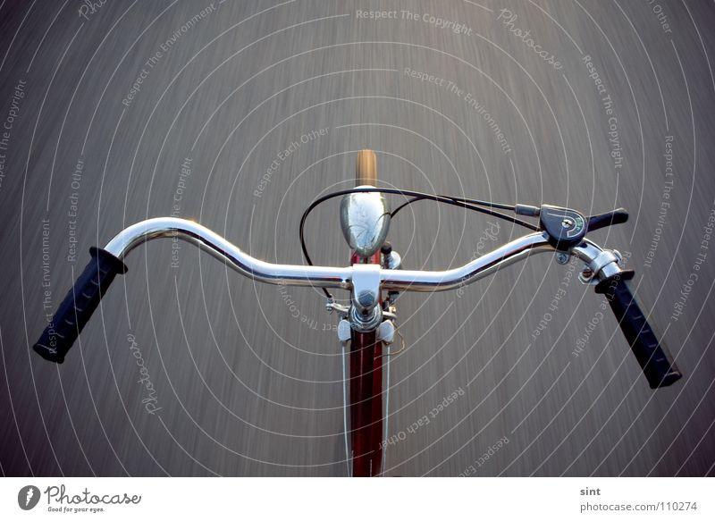 vollgas voraus Sommer Freude Straße Wege & Pfade Fahrrad Geschwindigkeit Erfolg gefährlich Aktion Macht bedrohlich fahren Güterverkehr & Logistik Fahrradfahren Fahrradlenker