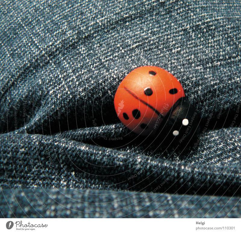 kleiner Marienkäfer aus Holz liegt auf blauem Jeansstoff Jeanshose Stoff rot schwarz weiß Glücksbringer Glückwünsche angemalt Dekoration & Verzierung Freude