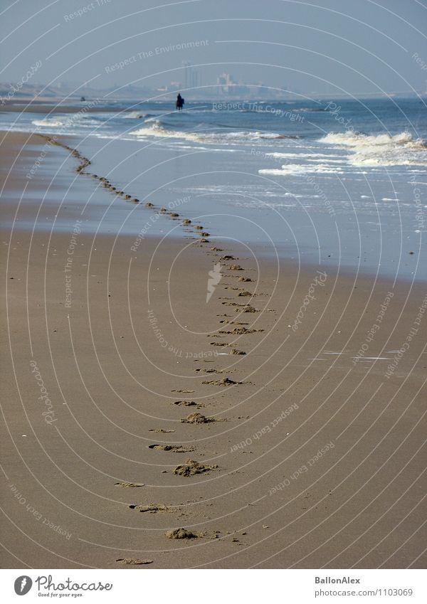 Spuren Natur Ferien & Urlaub & Reisen Wasser Erholung Meer Einsamkeit Tier Strand Ferne Bewegung Gefühle Küste Glück Freiheit Horizont Wellen