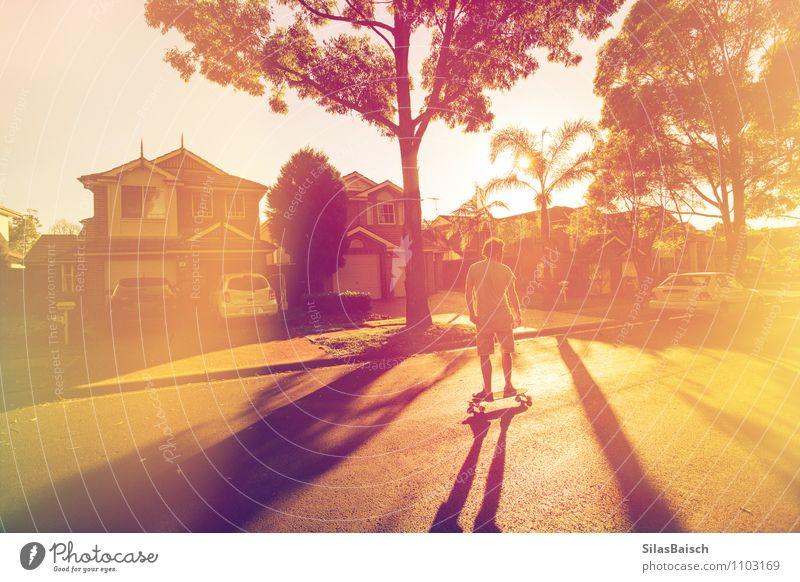 Sommergefühl Freizeit & Hobby Longboard Sport Mensch Junger Mann Jugendliche Erwachsene 1 18-30 Jahre Natur Sonne Sonnenaufgang Sonnenuntergang Sonnenlicht