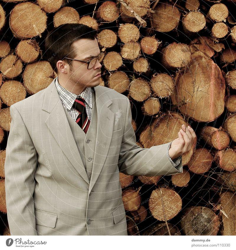schön trocken Mann Kerl Anzug Jacke Weste grau braun Hose Krawatte gestreift Hand hell Diebstahl entwenden geizig fantastisch Brille Holzstapel Brennholz heizen