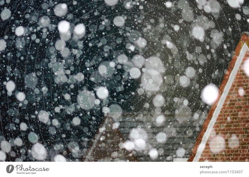 Schneefall Snow Snowfall Snowflake Winter Ice Frost Cold Seasons Living or residing House (Residential Structure) Flat (apartment) Life Christmas & Advent Cozy