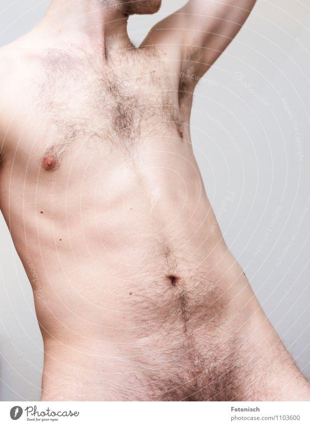 Hollywood Cut - Nein Danke Mensch maskulin Junger Mann Jugendliche Erwachsene Körper Bauch Schambereich Oberkörper 1 18-30 Jahre Behaarung Brustbehaarung