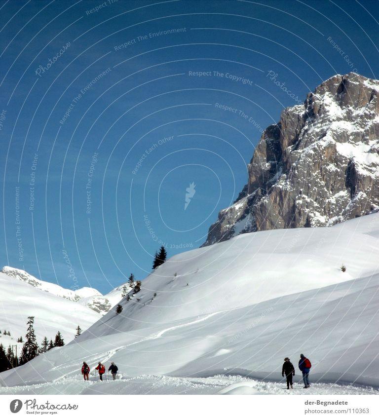 Auf zum Sulzfluh Himmel blau weiß Baum Winter Landschaft kalt Berge u. Gebirge Schnee Wege & Pfade braun Felsen mehrere wandern Alpen Idylle