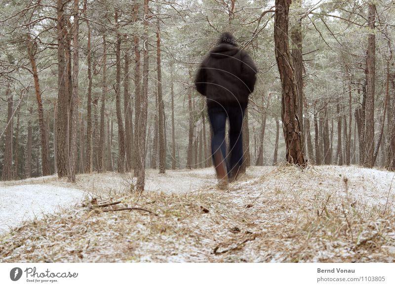Bewegung! Mensch Natur Mann grün Erholung Winter schwarz Wald kalt Erwachsene Schnee Wege & Pfade Sport Gesundheit braun