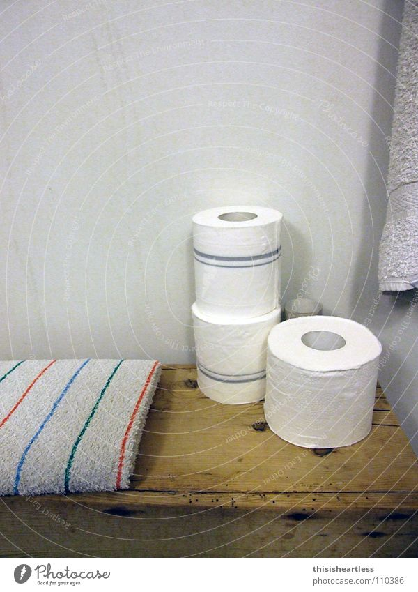 schön aufgeräumt ruhig Erholung Papier Bad Sauberkeit Sitzung Kot Konzentration Toilette Ladengeschäft Geruch Abgas Wäsche fertig Handtuch