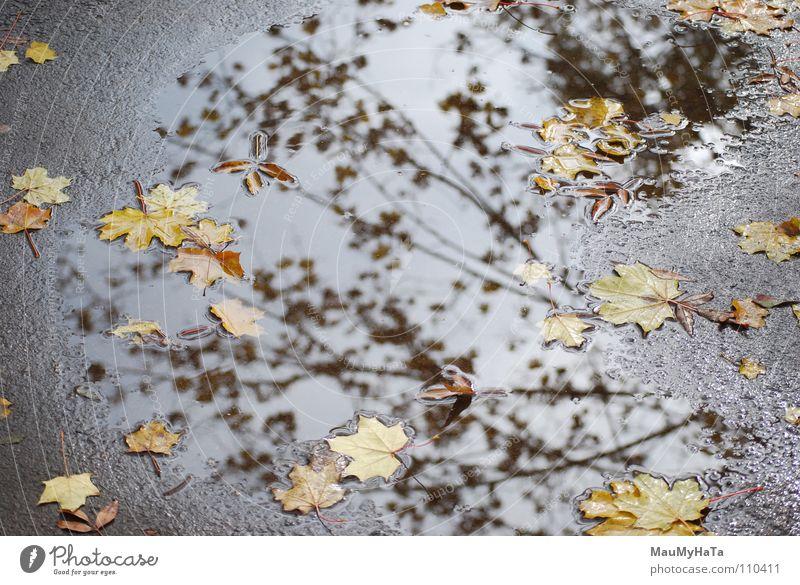 есеН 2007 Ahoi Asphalt Wolken nass Kunst Kunsthandwerk Freude For fall it had viewed the paper of water Wasser &#1052 &#1080 &#1090