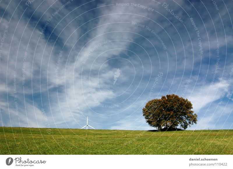 der Baum, der Himmel und die Windenergie schön weiß grün blau Wolken Herbst Wiese Gras wandern Wetter Horizont Windkraftanlage Schwarzwald