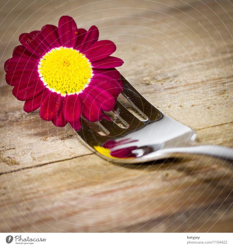 Gabel mit lila Blümchen Restaurant Besteck Margerite Blume Geschenk Blüte Gutschein Frühling Geburtstag violett Gerbera Glück Postkarte Gesunde Ernährung Essen