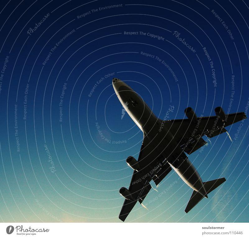 ja, auch dieser landet... Himmel blau Ferien & Urlaub & Reisen Wolken Erholung braun Flugzeug Beginn Luftverkehr Ende Flügel Mitte Flughafen Frankfurt am Main