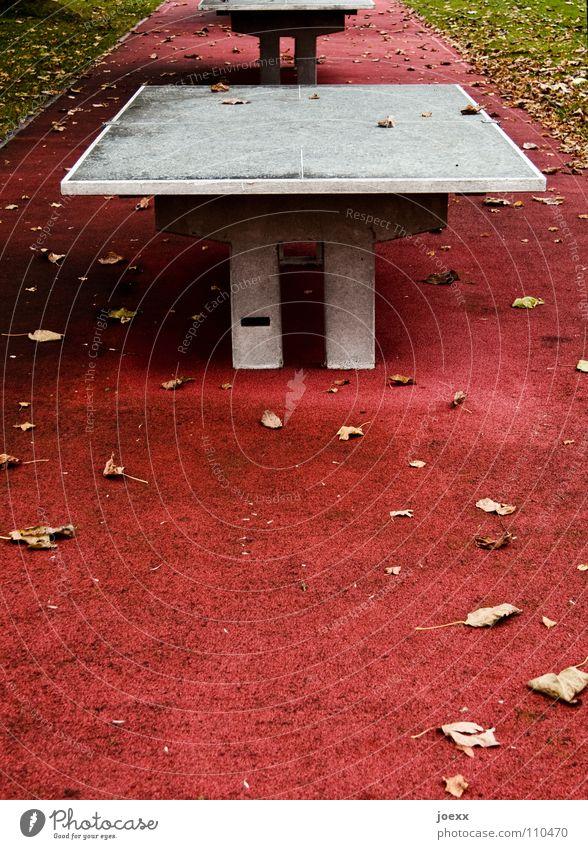 Ohne Netz, mit doppeltem Boden Beton Blatt Bodenbelag Freizeit & Hobby Gummi hart Herbst Herbstlaub Pause rot Spielen Spielplatz Tischtennis Tischtennisplatte