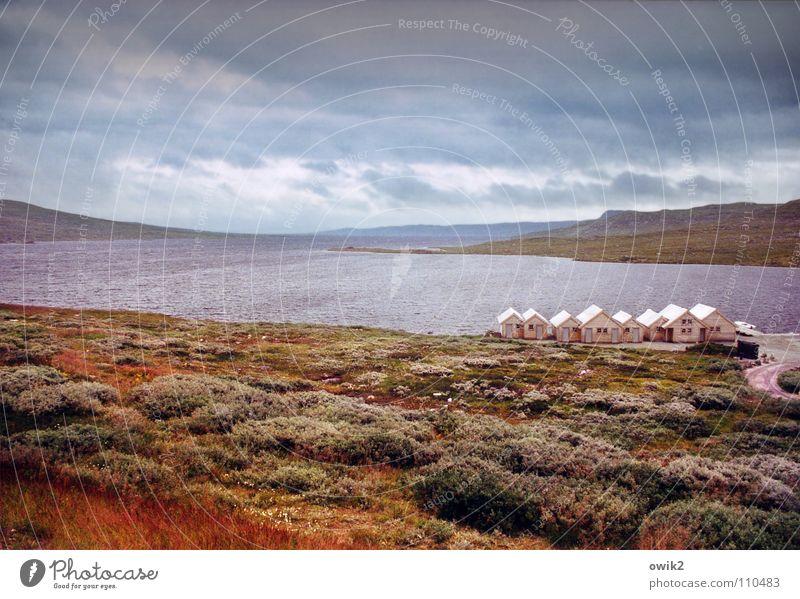 Hardangervidda Himmel Natur Ferien & Urlaub & Reisen Pflanze Wolken Landschaft Ferne Umwelt Berge u. Gebirge Herbst See Horizont Wetter Klima Idylle Gastronomie