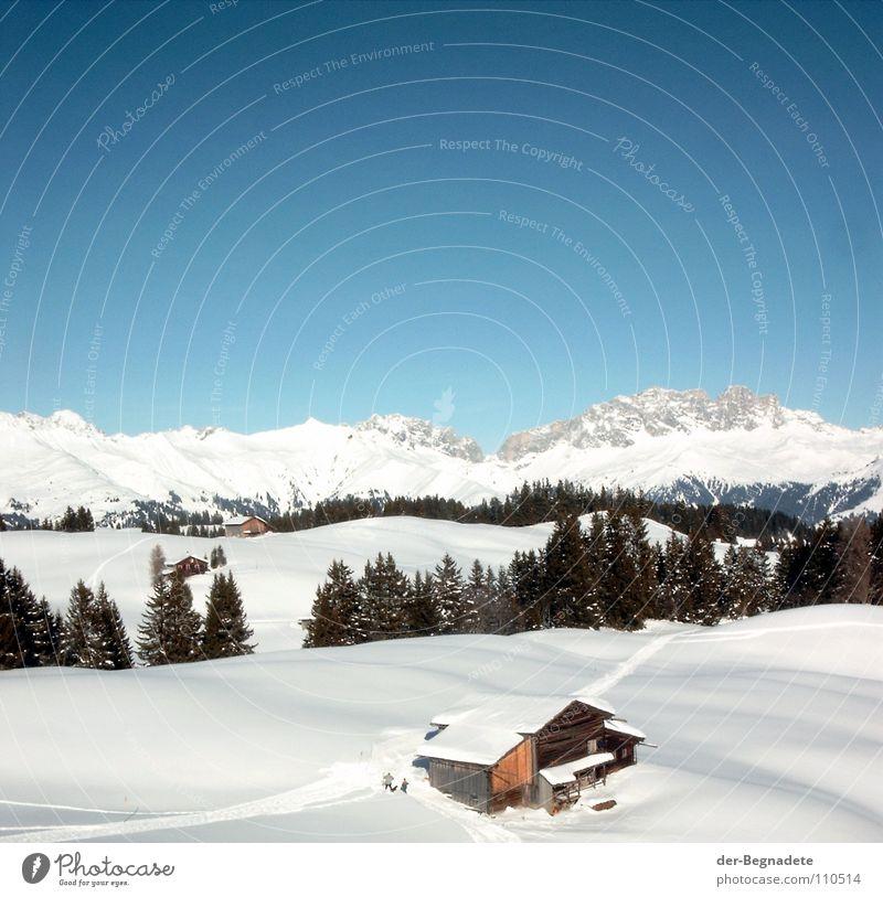 Bergidylle II Himmel weiß Baum blau Winter Wolken Wald kalt Schnee Berge u. Gebirge Wege & Pfade Landschaft braun Dach Schweiz Klarheit