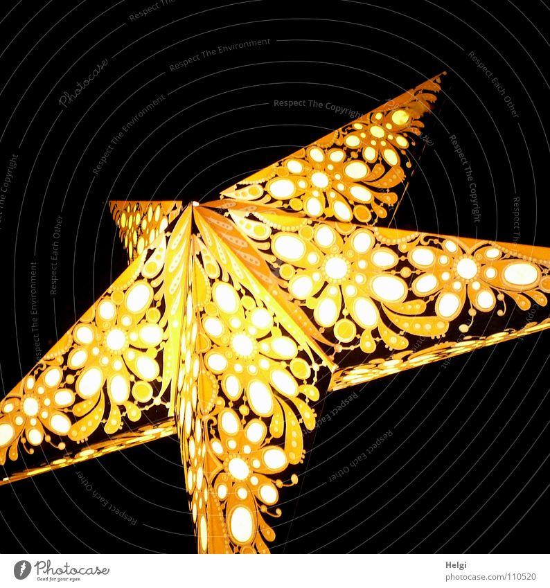 DAS FEST naht.... Weihnachten & Advent weiß Freude Winter schwarz gelb Fenster Lampe Feste & Feiern Beleuchtung Papier Stern (Symbol) leuchten Spitze Schmuck