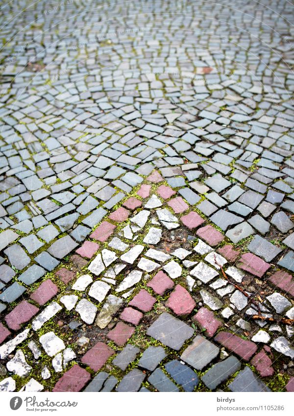 Aachener Pflaster Stadt alt weiß rot Straße Senior Wege & Pfade grau Zeit Stein Design historisch viele Netzwerk Ziel Pfeil