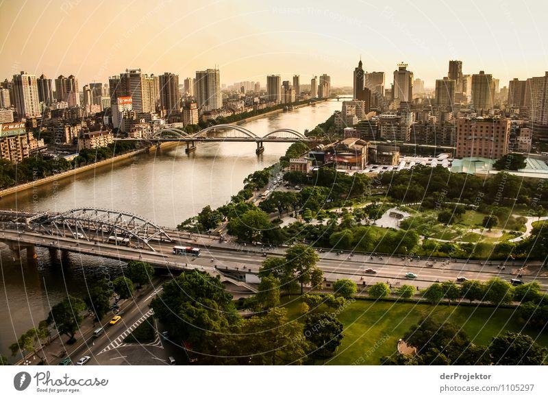 Goldene Zeiten in Shanghai Ferien & Urlaub & Reisen Tourismus Ausflug Ferne Sightseeing Städtereise Umwelt Schönes Wetter Park Wald Fluss Hafenstadt Skyline