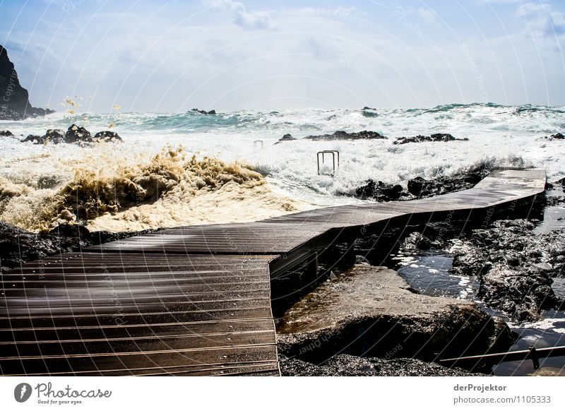 Gehe du schon mal vor Natur Pflanze Sommer Meer Landschaft Tier Strand Umwelt Gefühle Küste Angst Wellen Insel bedrohlich Todesangst Schwimmbad