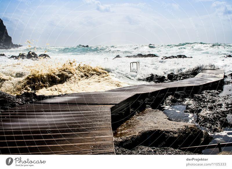 Gehe du schon mal vor Umwelt Natur Landschaft Pflanze Tier Sommer Sturm Wellen Küste Strand Bucht Meer Insel Aggression bedrohlich Gefühle Angst Entsetzen