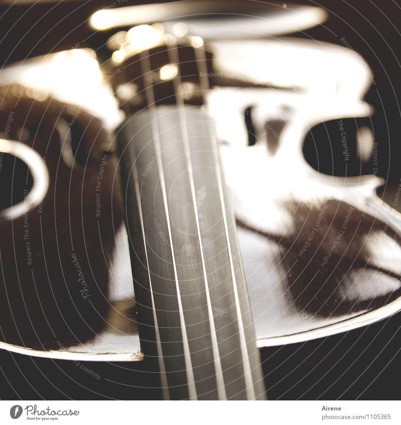 Ton in Ton Musik Musik hören Orchester Geige Saite Saiteninstrumente Holz Zeichen Linie elegant Erotik braun gold Kultur Kunst Lebensfreude Leichtigkeit