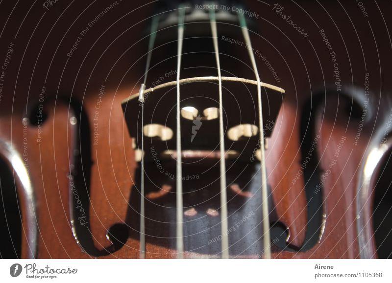 geigen saitenweise Musik Musik hören Konzert Orchester Geige Musikinstrument Streichinstrumente Saiteninstrumente schallloch steg Holz Ornament Linie braun