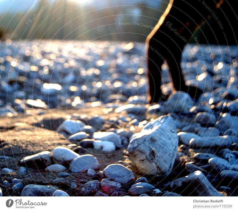 Herbststrahlen Sonnenuntergang Sonnenstrahlen Lichteinfall Hund ruhig Kies Mineralien Stein Trauer Verzweiflung Fluss Bach Herbstlicht Sand Schatten Hundebeine