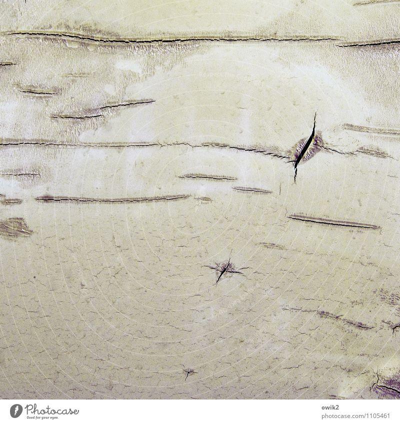 Leck Kunststoff dünn kaputt Vergänglichkeit verlieren Zerstörung Riss gerissen Schaden Zahn der Zeit Spuren Strukturen & Formen Oberfläche Oberflächenstruktur