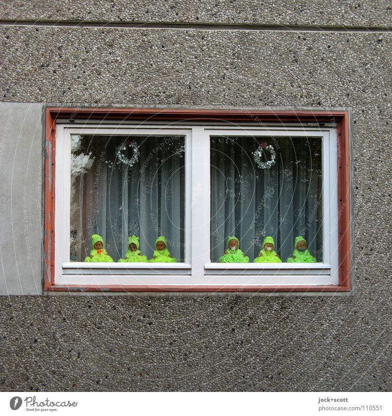 Baby Love (forward) Haus Fenster gelb Wand Architektur lustig Mauer klein Fassade träumen Häusliches Leben Dekoration & Verzierung Glas verrückt Beton