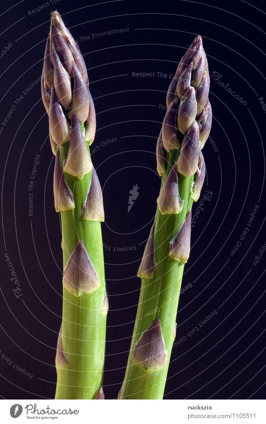 Spargelspitzen, Spargel, gruener, Asparagus officinalis, Gemüse Alternativmedizin Natur Pflanze Garten Feld frei grün schwarz Stangenspargel Edelgemuese