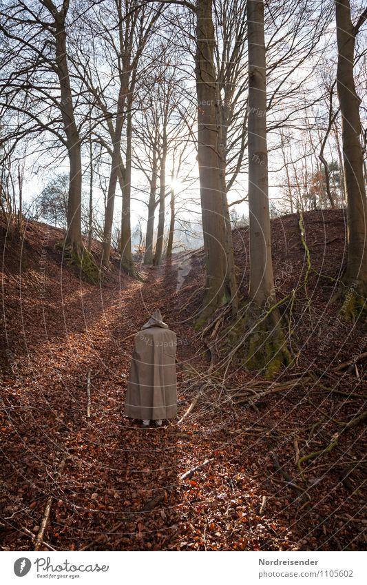 Aufbruch.... Mensch Natur Sonne Baum Einsamkeit Landschaft ruhig Wald Frühling Wege & Pfade Religion & Glaube laufen Schönes Wetter Ewigkeit Hoffnung Glaube