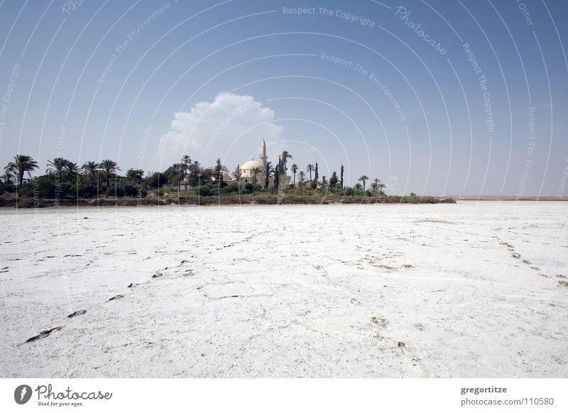 'chala sultan tekke' at the salt lake near larnaka Himmel Wolken Stein Palme See Mineralien Moschee Gotteshäuser Zypern Salzsee Salt Lake