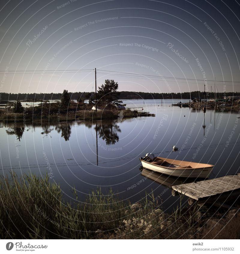 Småland Ferien & Urlaub & Reisen Ferne Freiheit Umwelt Natur Landschaft Wasser Wolkenloser Himmel Klima Schönes Wetter Pflanze Gras Sträucher Küste Bucht Ostsee