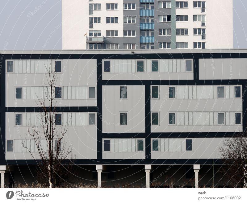 Schachtelhausen Pflanze Baum Berlin Stadt Stadtzentrum Stadtrand überbevölkert Menschenleer Haus Hochhaus Industrieanlage Bauwerk Architektur Mauer Wand Fassade