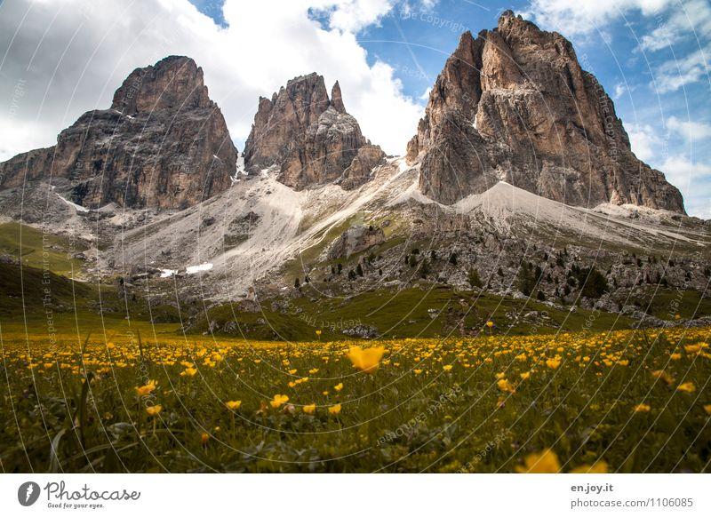 Wanderzeit Himmel Natur Ferien & Urlaub & Reisen Pflanze Sommer Landschaft Wolken Berge u. Gebirge Wiese Frühling Felsen Tourismus Klima Ausflug Blühend