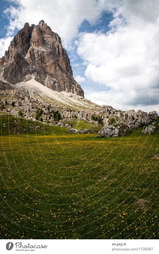 wild Himmel Natur Ferien & Urlaub & Reisen Pflanze Sommer Erholung Landschaft Wolken Berge u. Gebirge Wiese Frühling Gras Felsen Tourismus Ausflug Blühend