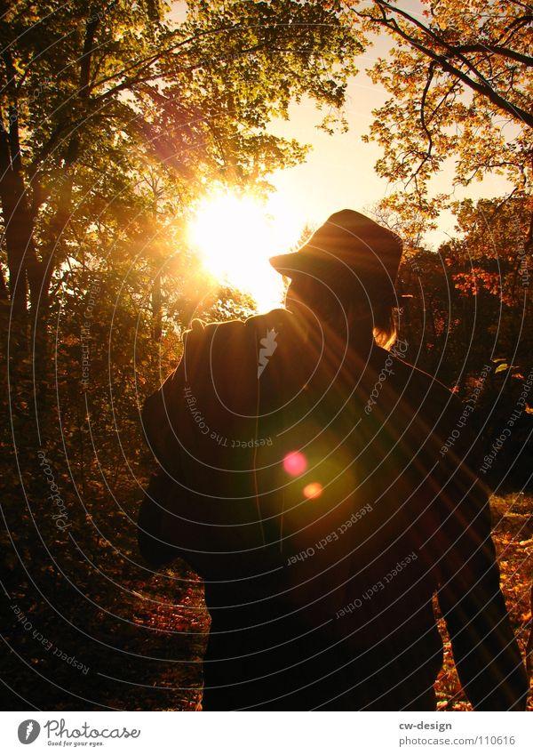 der sonne entgegen... II Mensch Sonne Freude Blatt Farbe dunkel Herbst Wand Graffiti Spielen Gefühle grau Mauer Stil Beine Luft