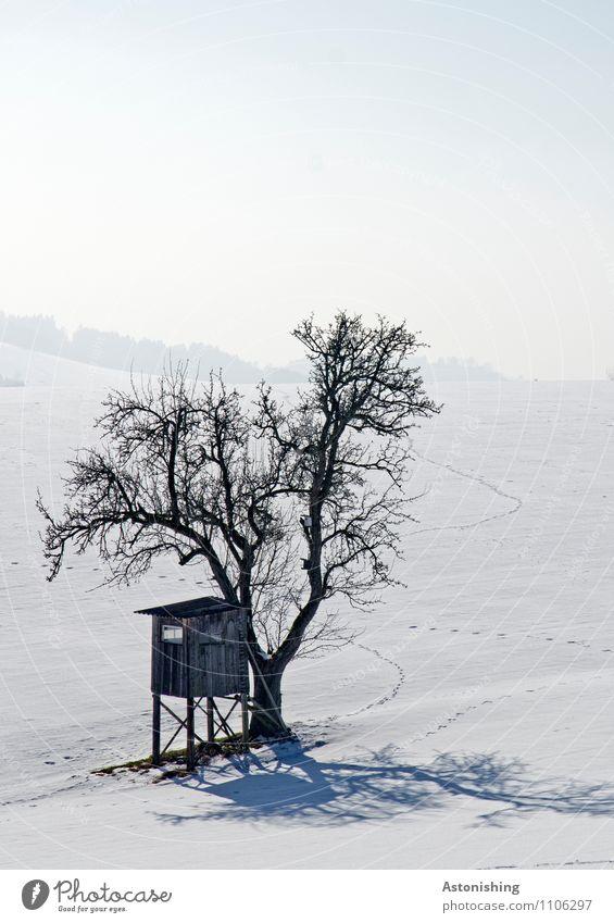 Baum und Hochstand Umwelt Natur Landschaft Pflanze Himmel Winter Klima Wetter Eis Frost Schnee Schneefall Wiese Hügel Hütte stehen kalt blau grau schwarz weiß