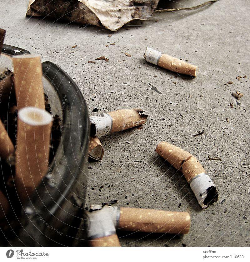 The Party is over Sommer Blatt Herbst Feste & Feiern Rauchen Balkon Club Zigarette Teer Brandasche Filter Krebstier Aschenbecher Tabak Lunge