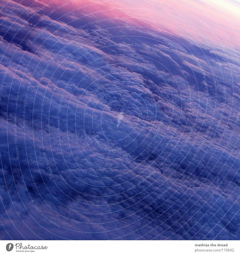 über den wolken Himmel blau Wolken dunkel oben rosa Flugzeug Nebel Luftverkehr weich violett fantastisch Altokumulus Altokumulus floccus
