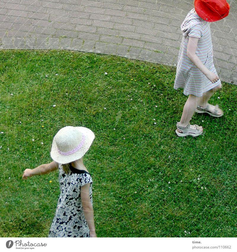 Zickchenalarm (Level 0-2) Farbfoto Gedeckte Farben Außenaufnahme Vogelperspektive Freude Leben Spielen Sommer Kind sprechen Mädchen Freundschaft Wiese