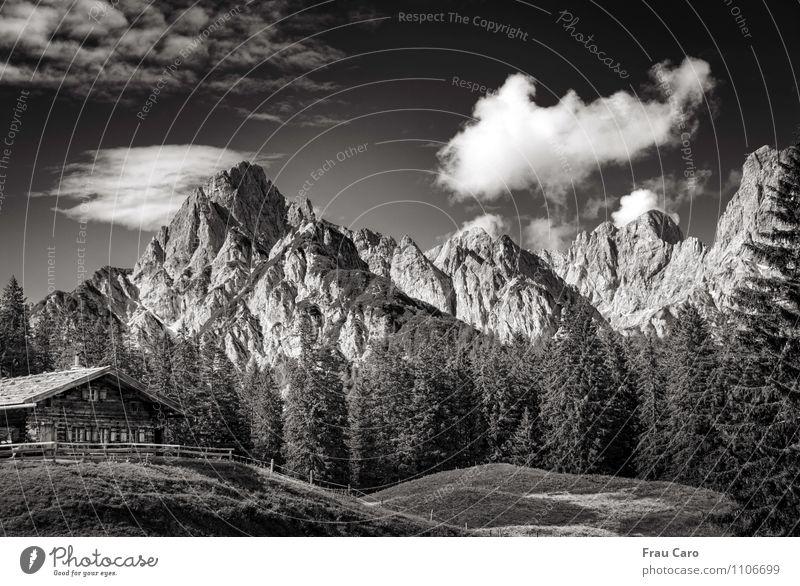 Alm in den Bergen Himmel Natur Ferien & Urlaub & Reisen Pflanze Sommer Baum Erholung Landschaft Wolken Tier Wald Berge u. Gebirge Wiese Gras Felsen