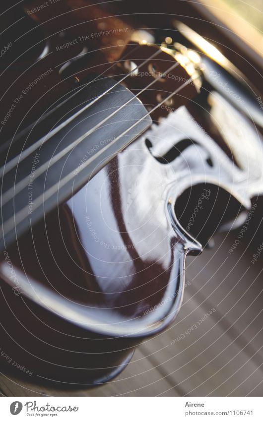 Spielpause Musik Musik hören Konzert Orchester Geige Musikinstrument Streichinstrumente Saiteninstrumente Holz Ornament Linie elegant braun gold fleißig