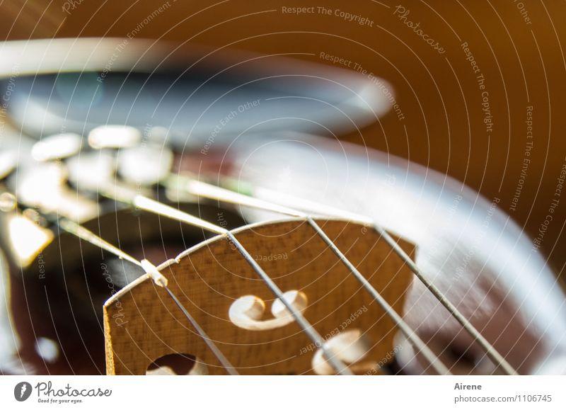 zart besaitet Musik Musik hören Konzert Orchester Geige Saiteninstrumente Streichinstrumente blau braun weiß Gefühle Freude fleißig Ausdauer Kultur Kunst Lust