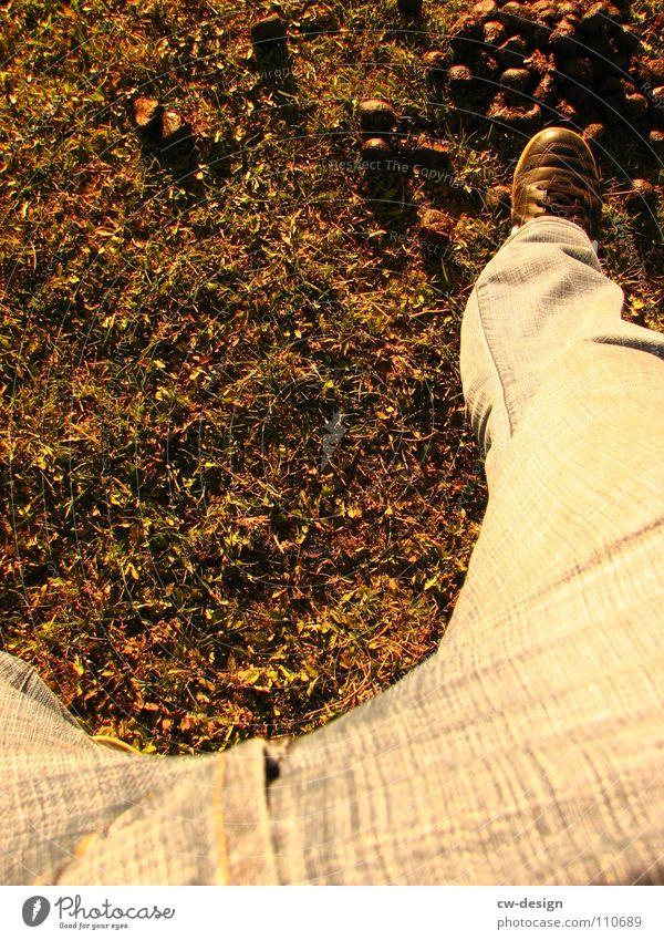 shaize, schon wieder montag Mensch Sonne Freude Blatt Farbe dunkel Herbst Graffiti Spielen Gefühle grau Mauer Stil Beine Luft Kunst