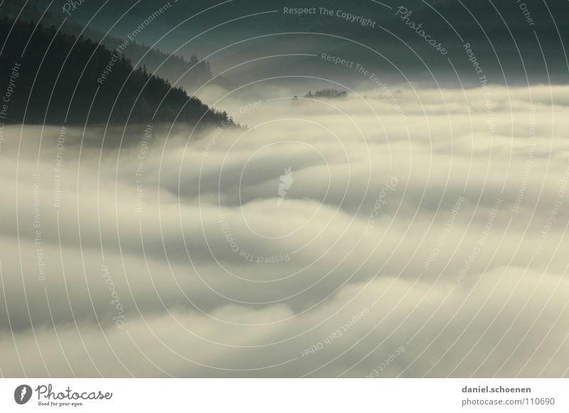 Invasionswetterlage Nebel Wolken schwarz weiß abstrakt Hintergrundbild Baum Herbst Schwarzwald Wald Winter Himmel Berge u. Gebirge Kontrast Schatten Wetter