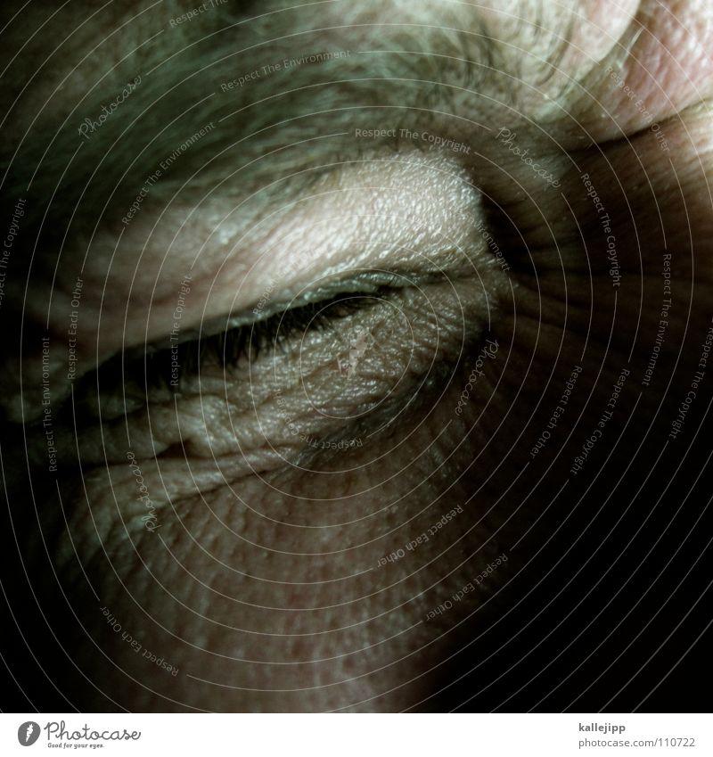 """apfel """"z"""" Mensch Gefühle Haut Nase Trauer Falte Verzweiflung zurück weinen falsch Wimpern Obdachlose verlieren Augenbraue Misserfolg Fehler"""