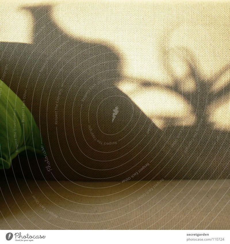 was seht ihr? Sofa Spielen Schattenspiel Stoff Kissen grün grau gemütlich lümmeln Fernsehen Material Wohnzimmer Möbel ruhig Erholung Freizeit & Hobby Herbst